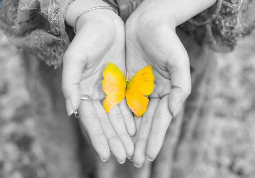 手の中の希望