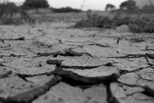 干からびた土地